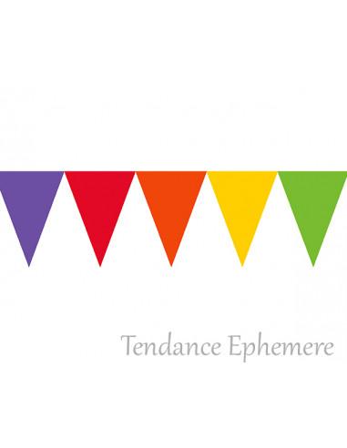 1 Guirlande Fanions Multicolores Vif 4.5m