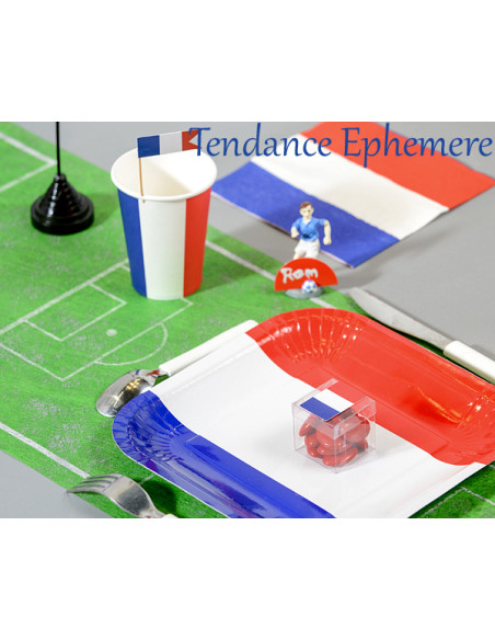 2 Assiette Carton France Carrée 24cm