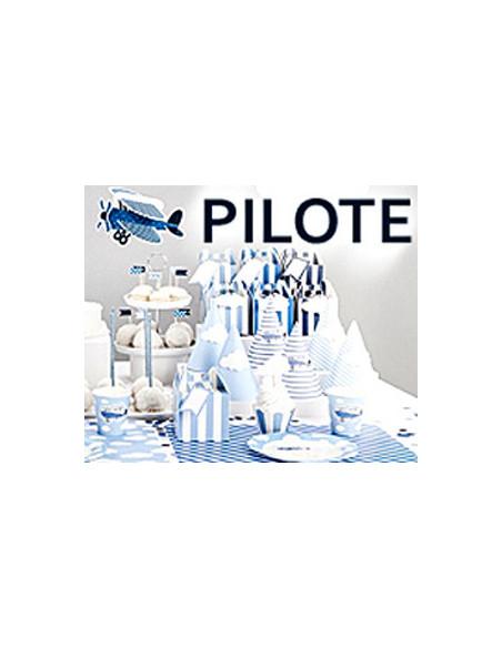 Thème Pilote