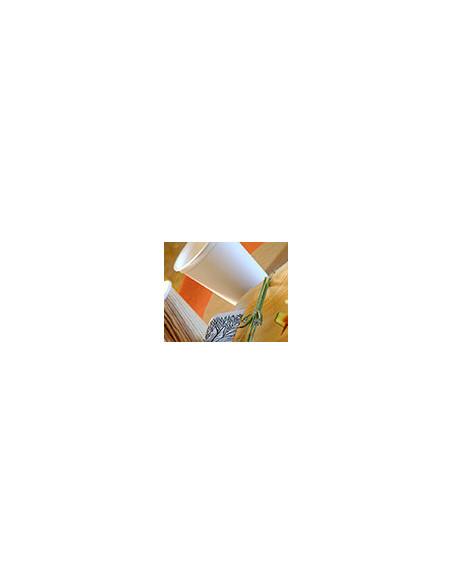 Gobelet Biodegradable